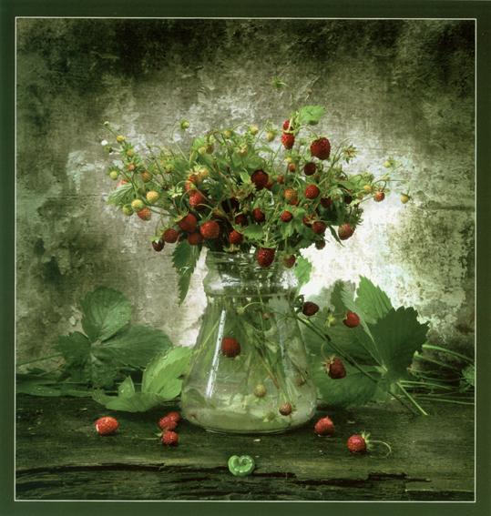 fot. Natalia Dorosh, Białoruś, Forest berries