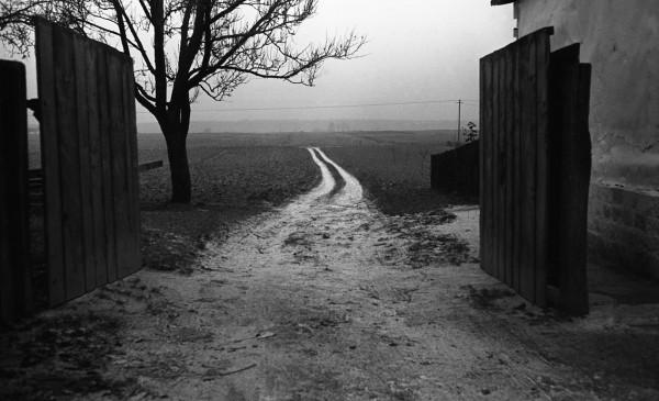 fot. Jerzy Tomala