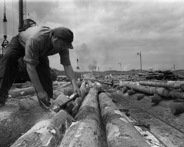 fot_Zdzisław Postępski_Zakłady Przemysłu Drzewnego w Rzepedzi_ze zbiorow Galerii Fotografii Miasta Rzeszowa